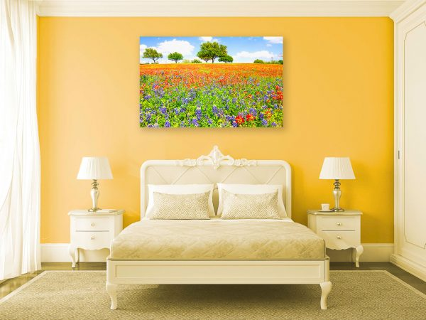 An image of a sunny wildflower field from Chappell Hill, Texas.
